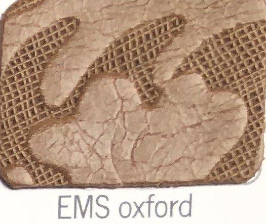 EMS_oxford