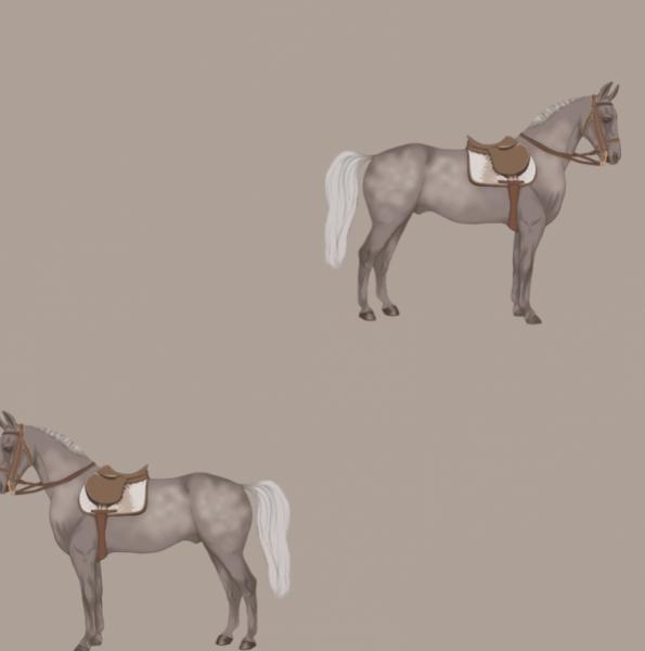 """Tapete """"Petit Horse"""""""