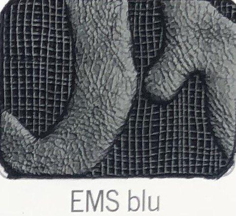 EMS_blu