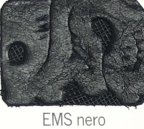 EMS_nero