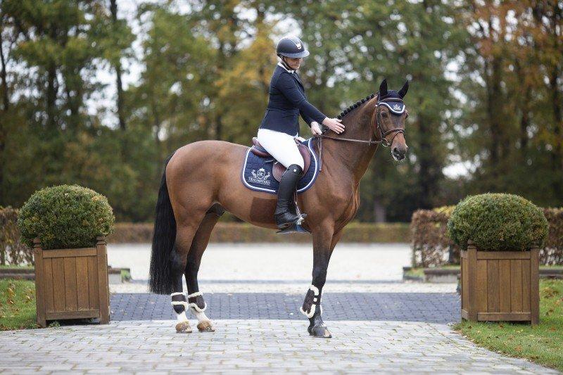 media/image/Pferd2mTfbK6FNVwPd.jpg
