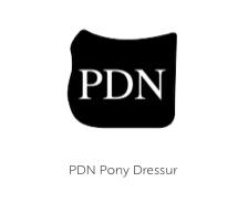 PDN-P-Dr