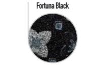 FORTUNA_black