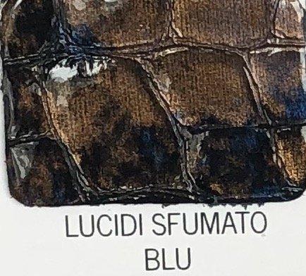 lucidi_sfu_blu