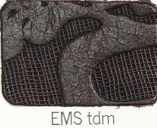 EMS_tdm