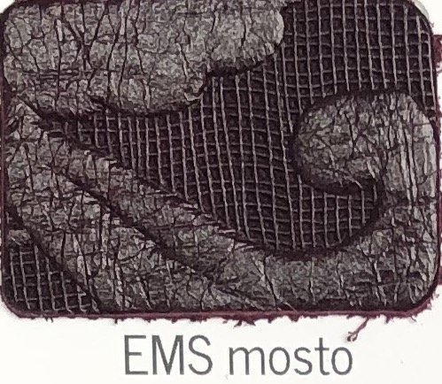 EMS_mosto