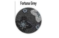 FORTUNA_grey